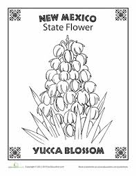 united states symbols coloring pages tennessee state flower worksheets flower and social studies