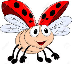 ladybug images u0026 stock pictures royalty free ladybug photos and