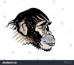 vector drawing head monkey profile stock vector 126359468