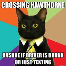 Unsure Meme - crossing hawthorne unsure cat meme cat planet cat planet