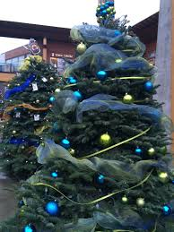 the christmas tree profile the big to do list