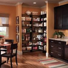 Corner Kitchen Pantry Cabinet by Pantry Cabinet Pantry Corner Cabinet With Walkin Corner Pantry