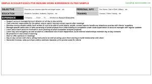 Executive Resumes Examples Account Executive Resumes Samples