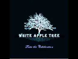 white apple tree snowflakes