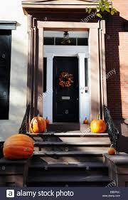 new york usa november 2014 pumpkins for thanksgiving on a