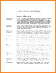 resume summary examples for sales 12 project statement example nurse resumed project statement example project overview statement example resume overview statement resume resume overview examples it resume summary statement it resume