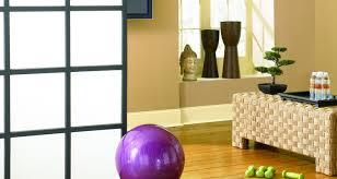 behr ultra int elegance design centered gym wc cork tr hummus 2faf97c3 03ea 4bbc b38f 021f500753fa prv jpg