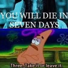 mudkip s stolen memes 122
