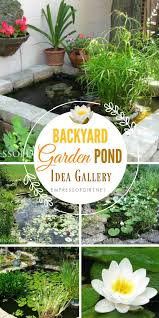 Backyard Pond Ideas 17 Beautiful Backyard Pond Ideas For All Budgets Empress Of Dirt
