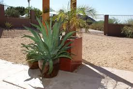 r a w f o r m d e s i g n large concrete planter