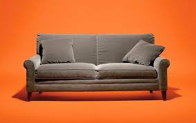How Do I Get Rid Of My Old Sofa Arlene Blum U0027s Crusade Against Toxic Couches The New York Times