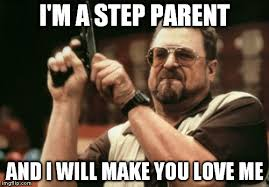 Step Parent Meme - am i the only one around here meme imgflip
