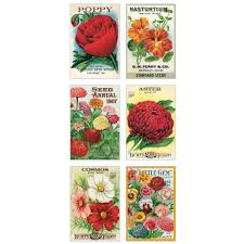 cavallini postcards co garden variety postcard glitter greetings from elizabeth s