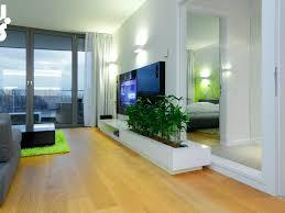 download home decor plants living room home intercine