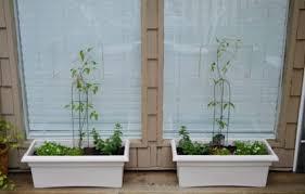 10 diy command hook ideas for the garden balcony garden web