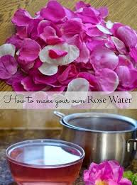 Where Can I Buy Rose Petals Making Wild Rose Water Lovely Greens Garden Living And Making