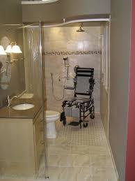 handicap bathroom design traditional with barrier free shower