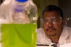 meet tracey electrical engineer algae researcher werc design