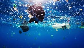 film blue world blue planet ii producer makes emotional plea to save ocean daily
