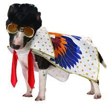 Rock Roll Halloween Costumes Rock Roll King Pet Costume Dog Halloween Costumes