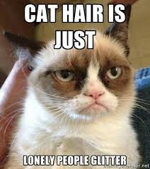Birthday Meme Cat - best 26 cat birthday meme meme grumpy cat and cat