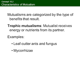 mutualism and commensalism ppt download