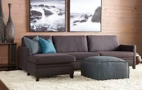 Comfortable Sofa Reviews Sleeper Sofa Reviews Comfort Okaycreations Net