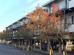 tallahassee apartments near fsu onyx tallahee goodbread fl