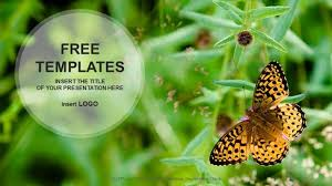 nature ppt templates free download free nature powerpoint