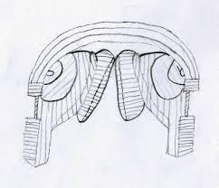 amber u0027s design blog five chosen object sketches