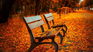pics hd autumn bench wallpapers hd wallpapers