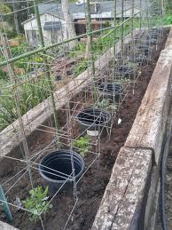 blog posts gardening in la