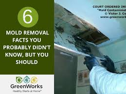 how to get rid of musty smell greenworks llc