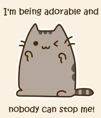 Pusheen Cat Meme - pusheen cat meme anime amino