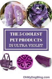 51 best color names pantone the 5 coolest pet products in ultra violet pantone u0027s 2018 color