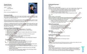 Bad Examples Of Resumes by Bold Idea Babysitter Resume Sample 11 Template Babysitter Is Going