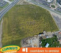 29 best attractions images on utah corn maze and