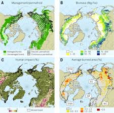 North America Forest Map by Boreal Forest Health And Global Change Science