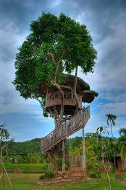 Cool Tree Houses 33 Best Treehouses And Cool Huts Images On Pinterest
