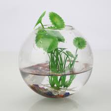 compare prices on glass planters online shopping buy low price