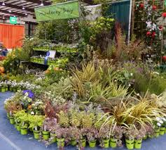 Home Design Show California Design With Diversity Planting Designs And Coaching Home
