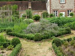 114 best herb garden images on pinterest garden ideas gardening