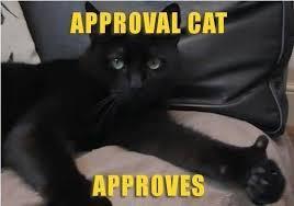 Cat Memes Generator - cute walking cat meme generator segerios com segerios com
