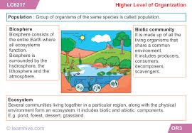 learnhive icse grade 7 biology organization in living things