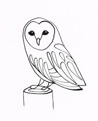 drawn owl simple pencil and in color drawn owl simple