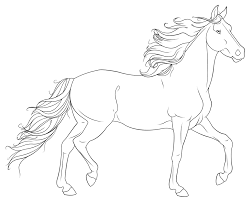 realistic wild horse coloring pages
