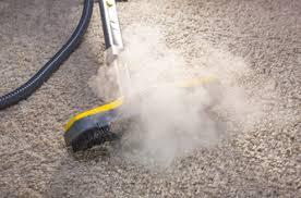 location machine vapeur nettoyage canapé guide d achat nettoyeur vapeur darty vous