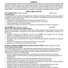 Credit Risk Business Analyst Resume It Sales Cover Letter Examples Marketable Cover Letter Samples