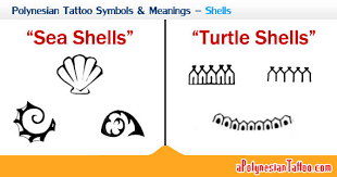 polynesian tattoo symbols u0026 meanings u2013 shells