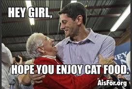 Paul Ryan Meme - from the paul ryan hey girl series hey girl grandma like cat food